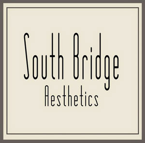 south-bridge-aesthetics-new